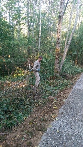 Michael cleaning the forest (just as he learned from his mother)