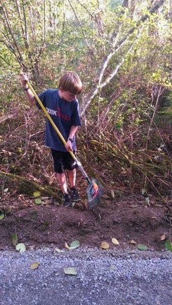 arranging moss (2)